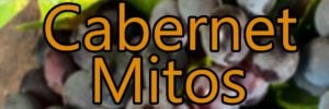 Wine with Cabernet Mitos grapes