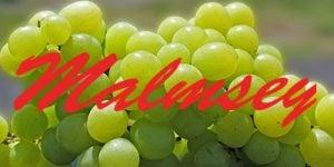 Malmsey grapes