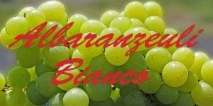 Albaranzeuli Bianco grapes