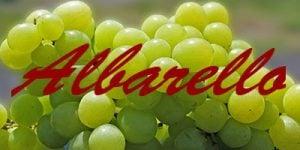 Albarello grapes