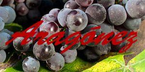 Aragónez grapes