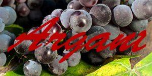 Argant grapes