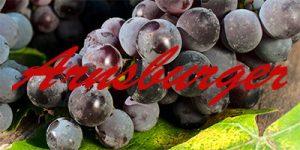 Arnsburger grapes