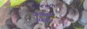 Wine with Gellewza grapes