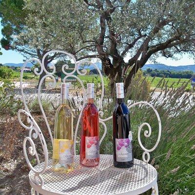 Wines from Côtes du Rhône, France