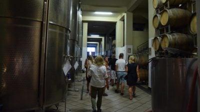 Winemaking Clarification