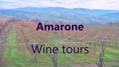 Amarone wine tours