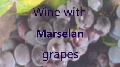 Wine with Marselan grapes