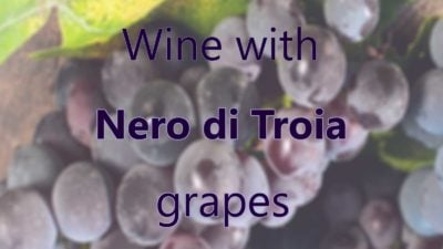 Wine with Nero di Troia grapes