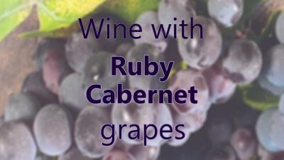 Wine with Ruby Cabernet grapes