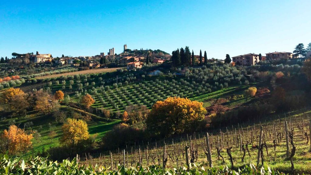 Camping for Wine in Tuscany, Italy