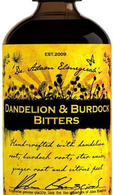 Dr Adam Elmegirabs - Dandelion & Burdock 100ml Bottle