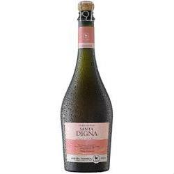 Torres Chile Santa Digna Estelado Rose 2012 6 x75cl bottles