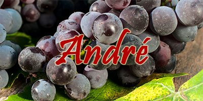 Wine with André grapes