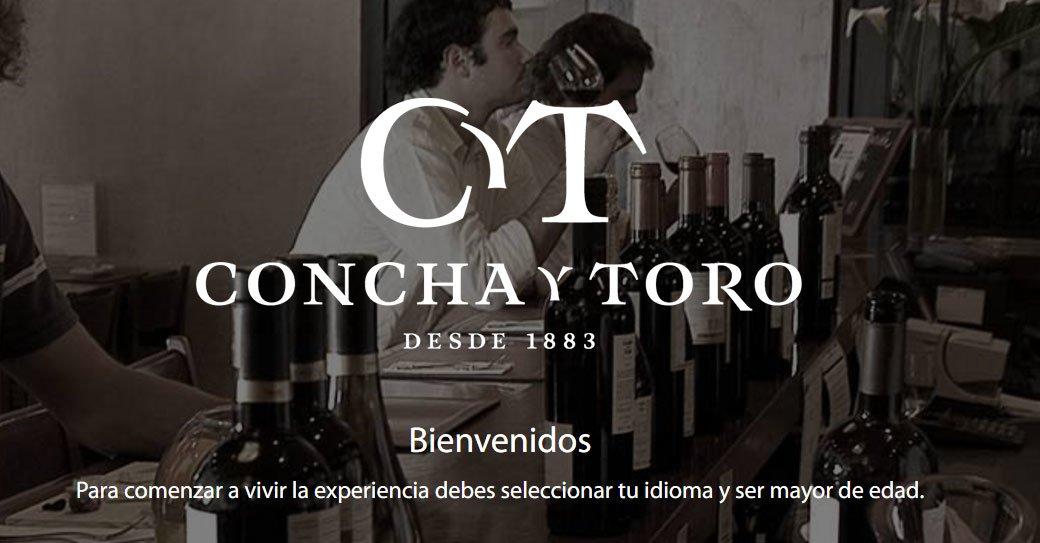 Concha Y Toro