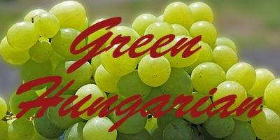 Green Hungarian