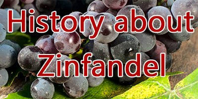 The history about Zinfandel