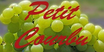 Petit Courbu