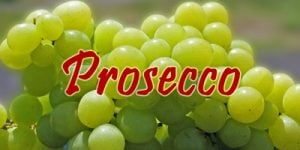 Wine with Prosecco grapes