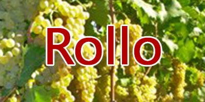 Wines with Rollo grapes