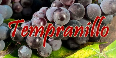 Wines with Tempranillo grapes