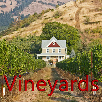Breweries and Vineyards