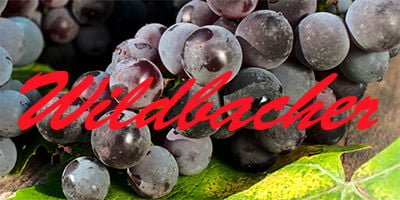 Wildbacher grapes