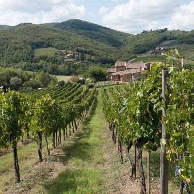Wines from Chianti